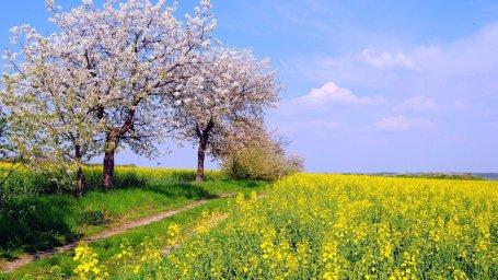 Россия Весна Апрель-для рабочего стола