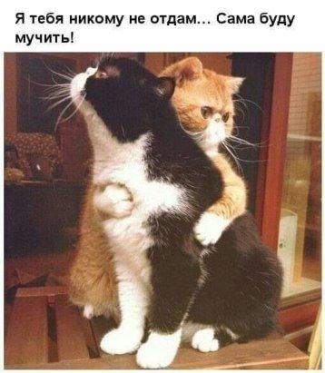 Мой и только мой!