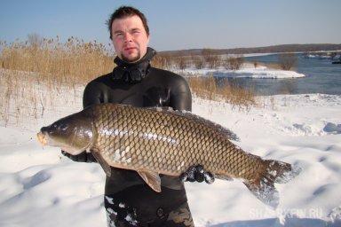 Амурский сазан-рыбы Байкала